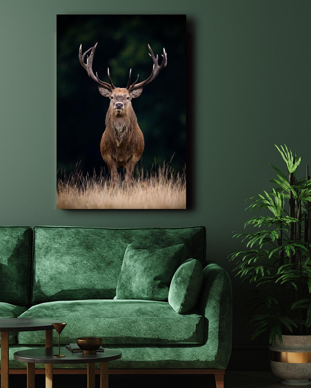 Interiør-Mock-Deer