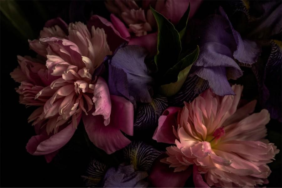 Interiør-blomst