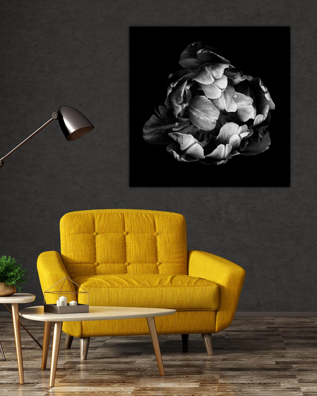 Interiør-Mock-Tulip