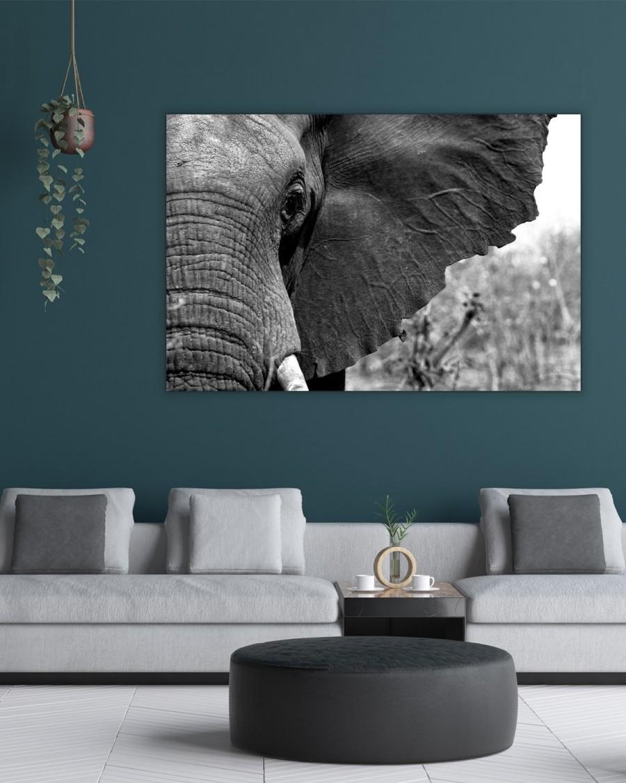 Interiør-Mock-Elefant