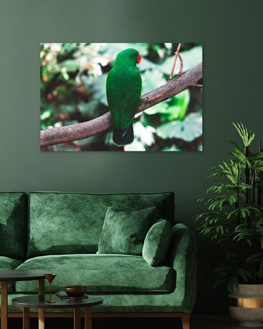 Interiør-Mock-Grønn-Papegøye