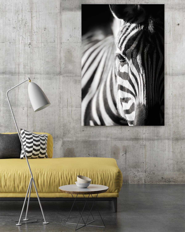 Interiør-Mock-Zebra