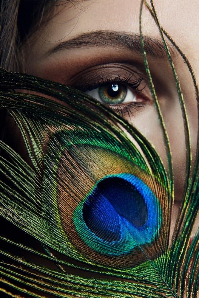 Interiør-Peacock-feather