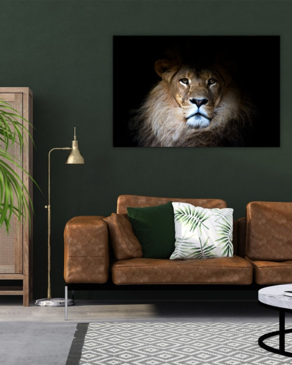 Interiør-Mock-Majestic-Lion