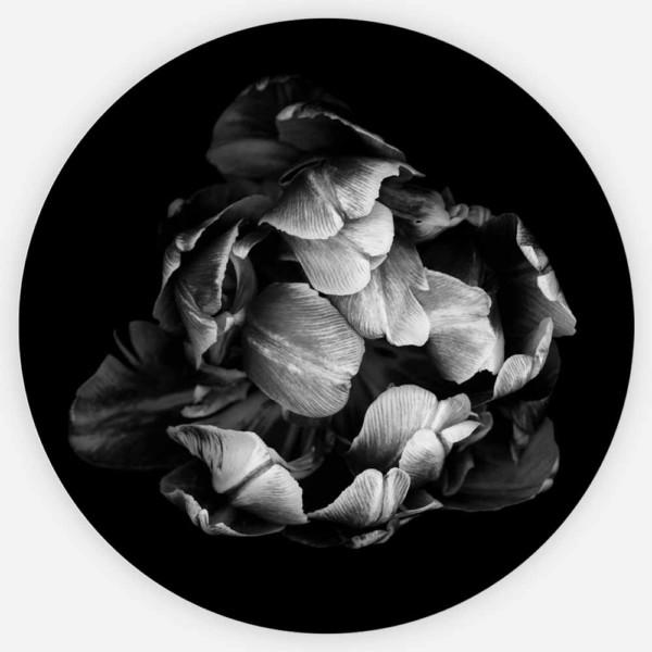 Interiør-Black&WhiteTuli-Rund