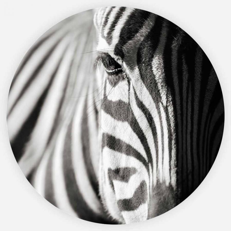 Interiør-Zebra-rund