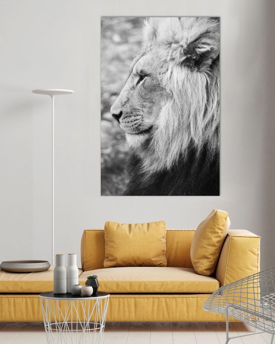 Bilde til vegg - Interiør - king - løve